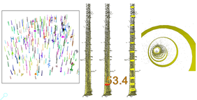 Fig. 2 Individual tree point clouds and accurate measurement of location, DBH and tree stem curvature